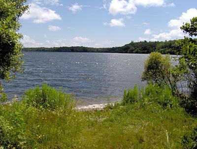 coonamessett pond falmouth