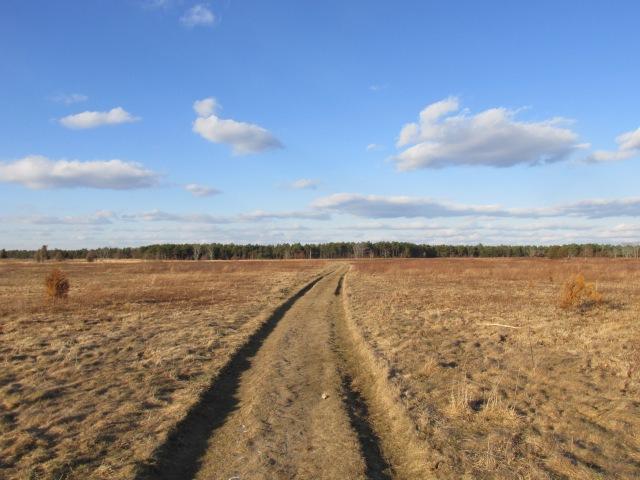 Pheasant Area Frances Crane